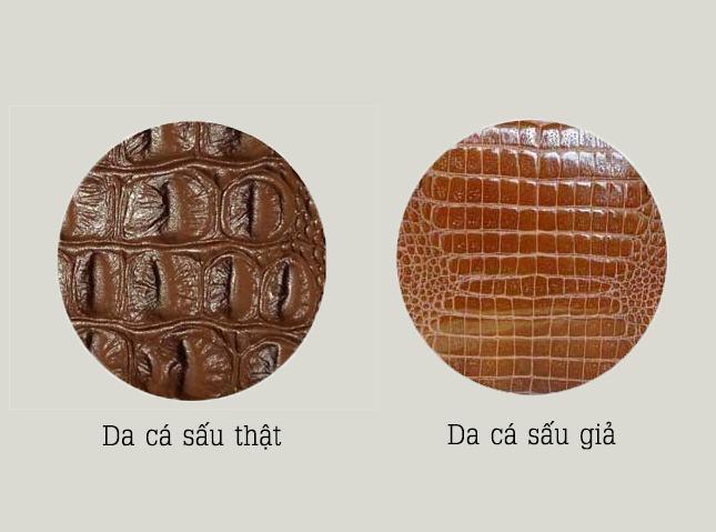 [Image: nhung-san-pham-lam-tu-da-ca-sau-1.jpg]