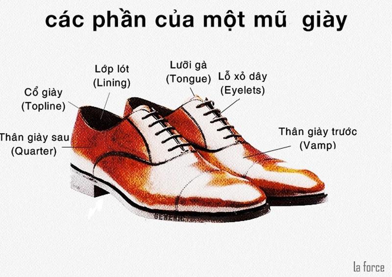 lưỡi gà giày
